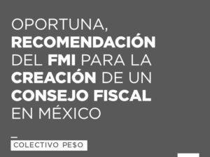 fmi-recomendacion-consejo-fiscal