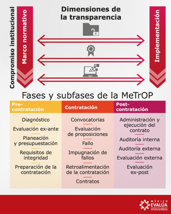 Fases y subfases